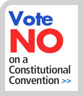 Vote no on constitutional convention sidebar graphic