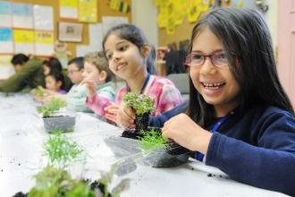 A student adds a polka dot plant to her minature garden.