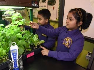 Students spend time at one of the seedling benches.