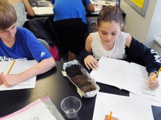 Two 5th-graders record evidence about whether pill bugs prefer dry, moist or wet