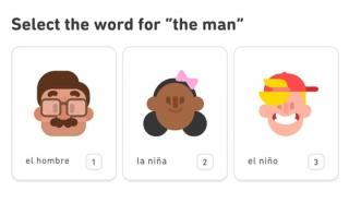 "Duolingo courses use a gaming structure with the threat of losing ""lives"" with m"