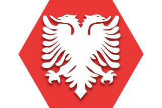 Hexagon with red background and symbol representing UFT Albanian American Heritage Committee