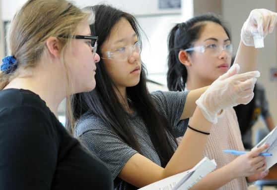Students use a spectrophotometer to measure the intensity of light in part of th